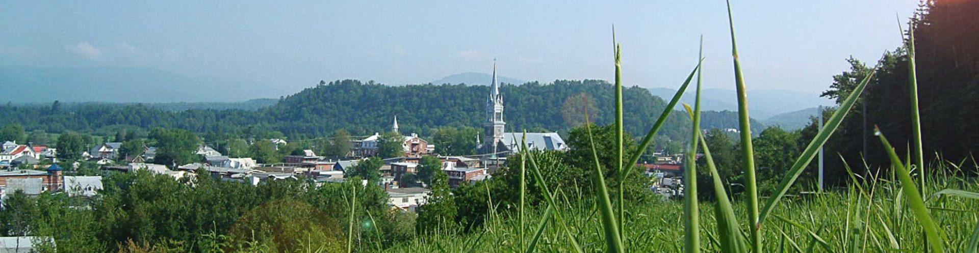 Municipalités locales