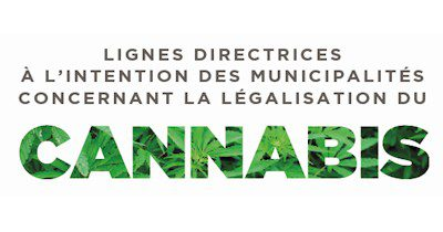 Légalisation du cannabis <br/> L&rsquo;UMQ publie un guide à l&rsquo;intention de ses membres