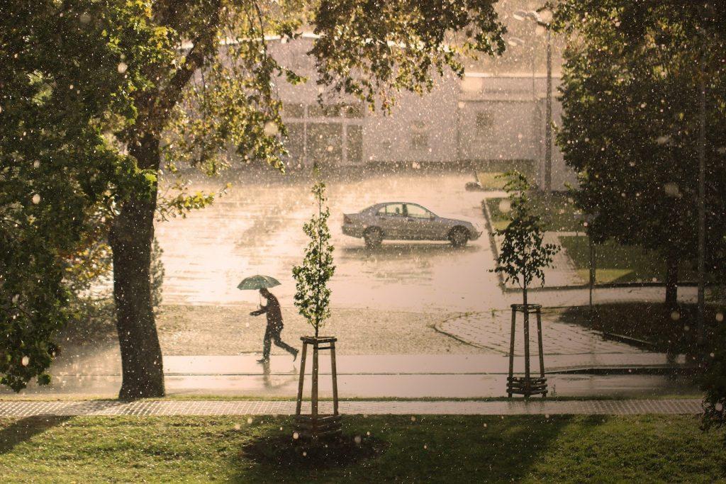 La gestion des eaux pluviales par les infrastructures vertes
